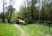HolzstegRammerwies_klein