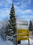 forsthof1_klein