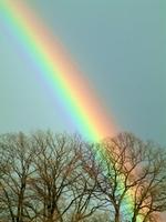 Regenbogenland_small